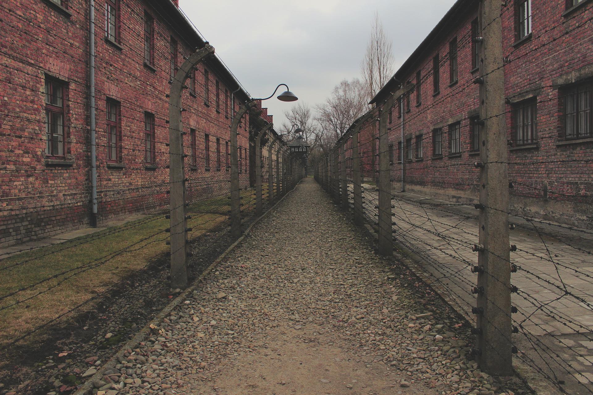 nazi experience
